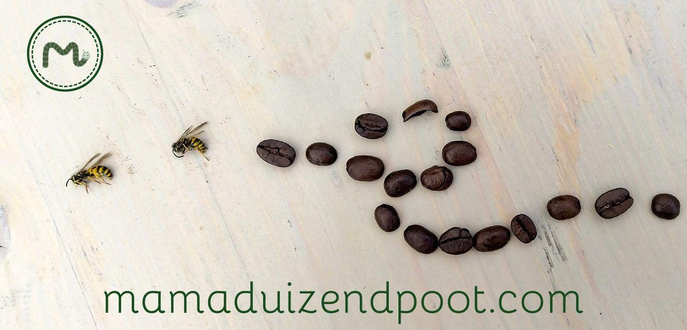 Aaargh, ik wordt gek van die wespen!