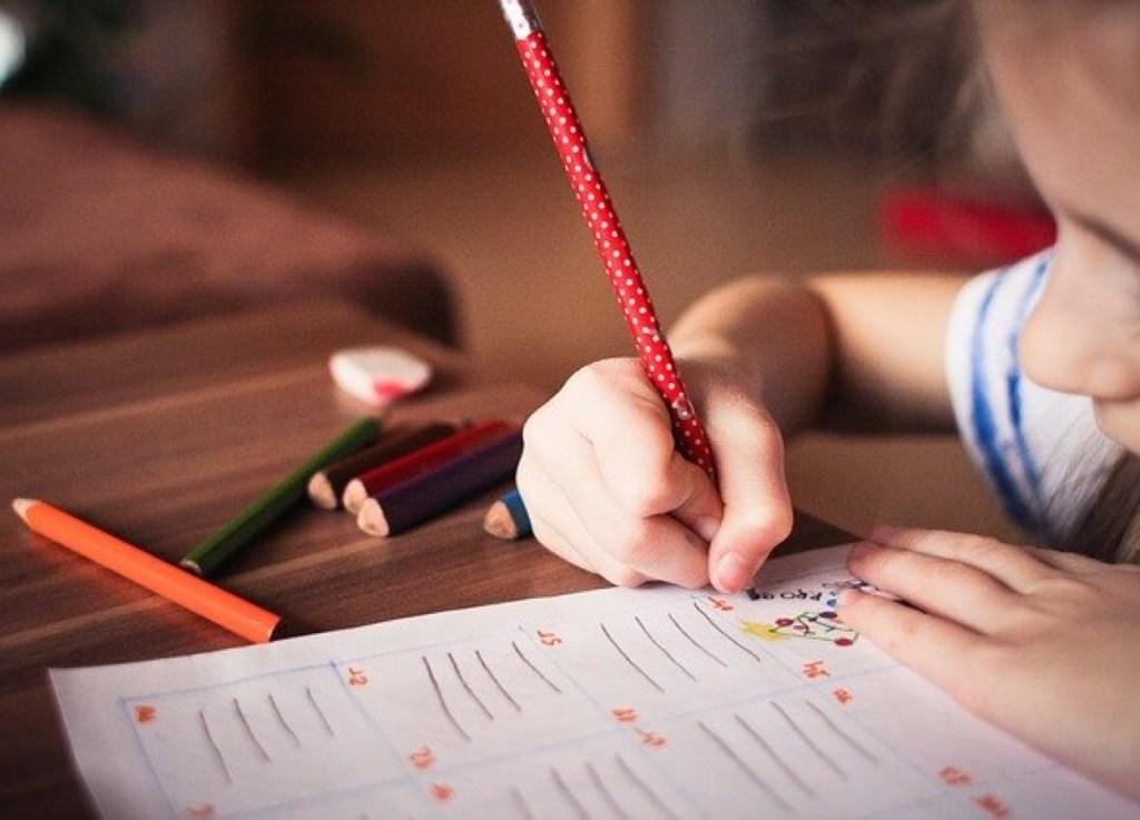 criança estudando, atividades educacionais , dever de casa