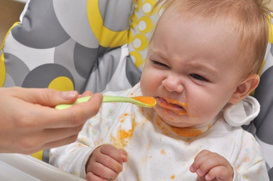 introdução alimentar irresistível - mamae e cia