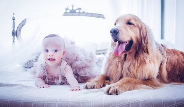 Bebê com cachorro