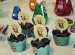 Decoração-festa-Infantil-tema-Cientista com kit da Zumbalum