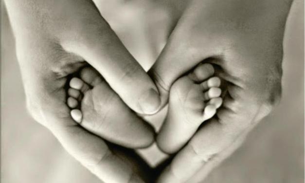 Vida Pós Maternidade