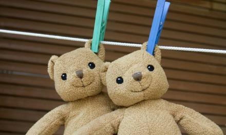 Brinquedos – Faça a Manutenção Você Mesma