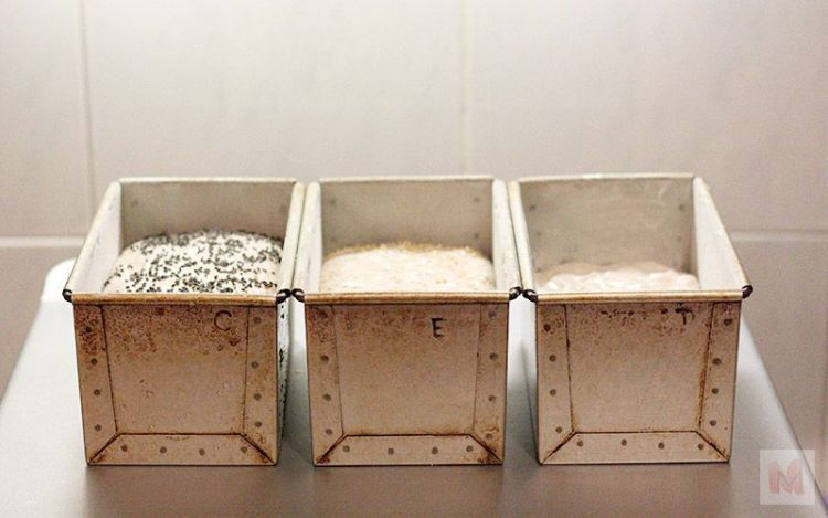 Masas en moldes. segunda fermentación