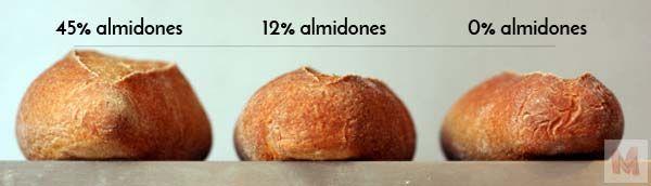 almidones y fermentación perfil