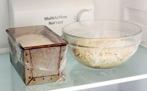 ¿Debe fermentar la masa con su forma definitiva? nevera