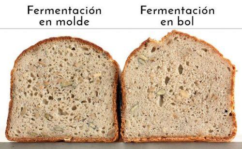¿Debe fermentar la masa en su forma final? panes sin gluten miga