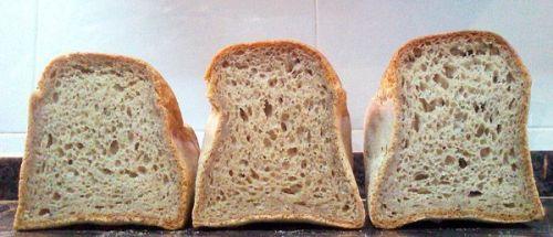sobrefermentación pan sin gluten