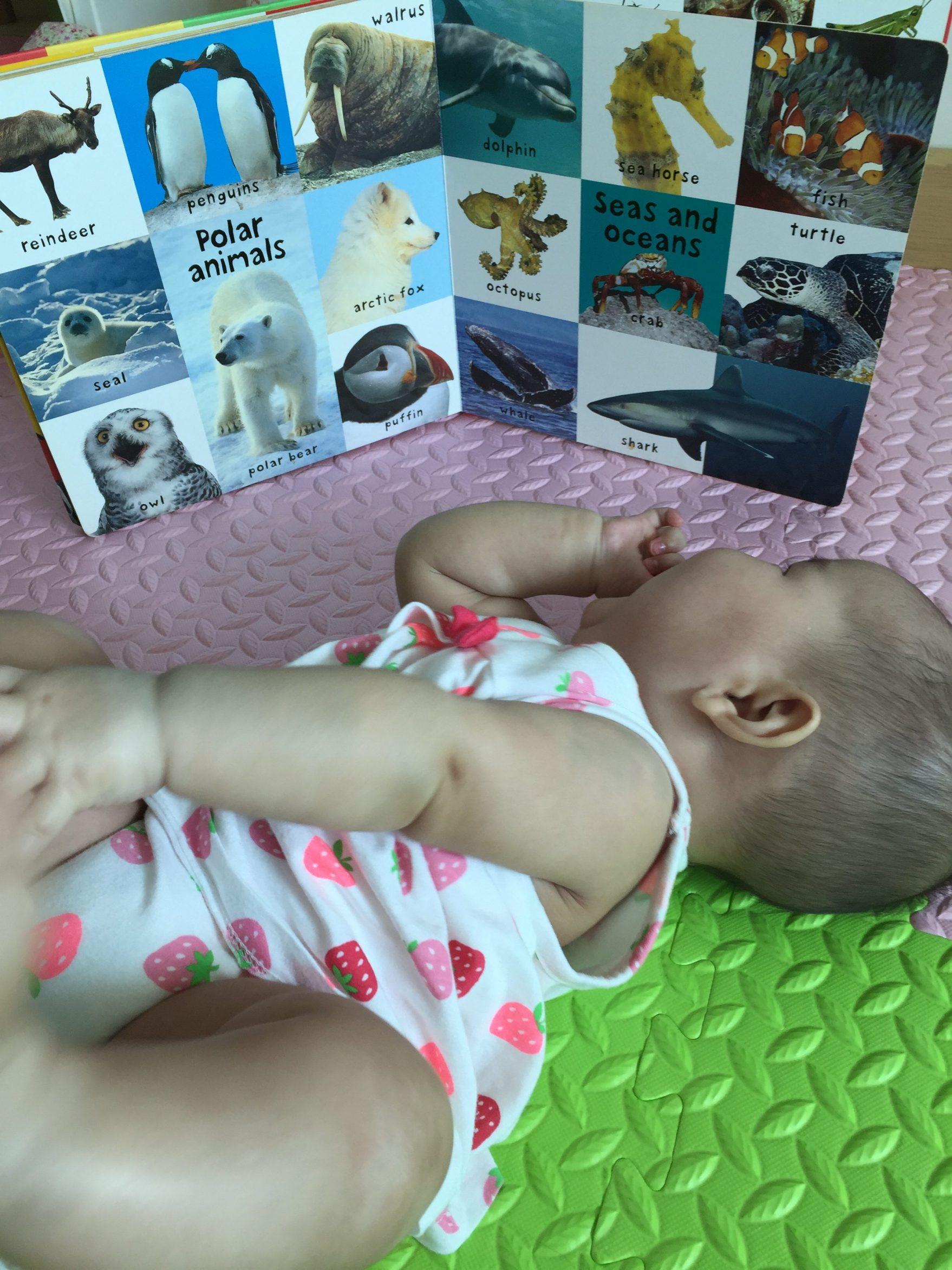 嬰兒閱讀時間