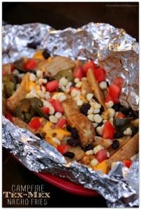 Campfire Tex-Mex Nacho Fries
