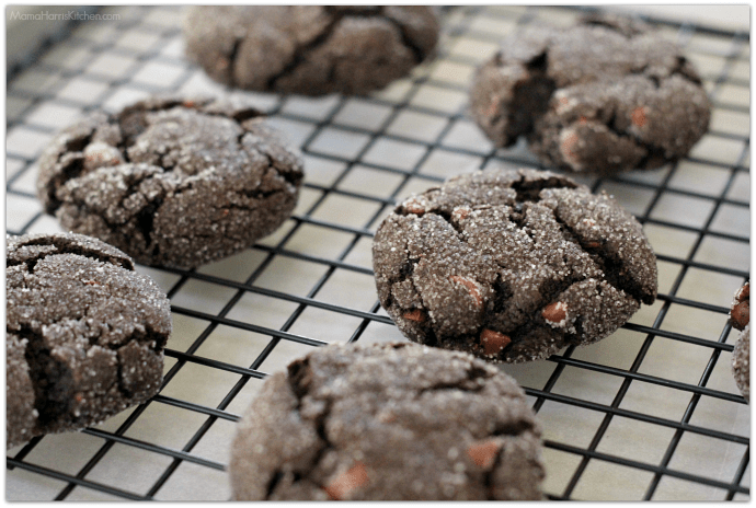 Chewy Chocolate Cookies with Coffee Glaze for #25DaysOfCookies on #NationalCookieDay #HousefulOfCookies | Mama Harris' Kitchen