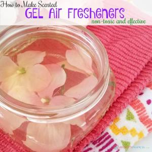 DIY Scented Gel Air Fresheners (non-toxic and effective)