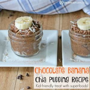 Chocolate Banana Chia Pudding Recipe
