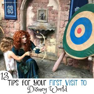 13 Tips for Your First Visit to Disney World