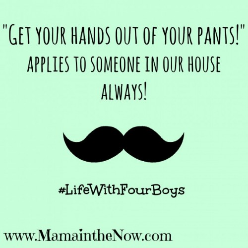"""Get your hands out of your pants!"" applies to someone in our house - always!"