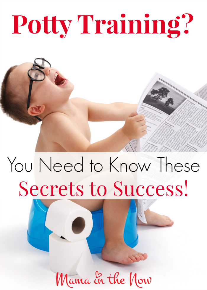 Potty training? You need to know these secrets to success. Tips and tricks from a mother of four boys.