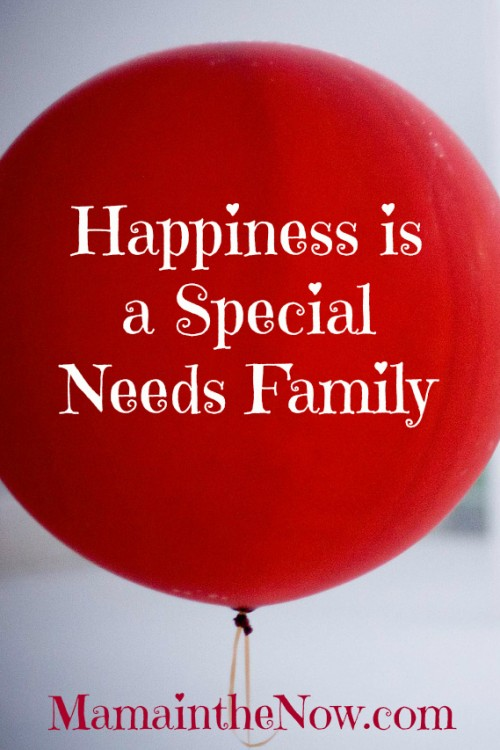 Happiness is a Special Needs Family. Encouragement for mothers of sick kids, medical moms, heart moms and special needs moms. Motherhood is hard, but happiness is always around the corner. #Motherhood #SpecialNeeds