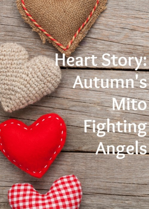 Heart Story: Autumn's Mito Fighting Angels