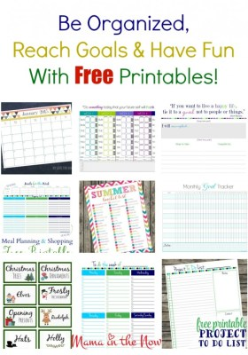 Be organized, reach goals and have fun with these FREE printables! Exceed your dreams of efficiency and productivity. These are perfect for working moms and stay at home moms. Rock motherhood!