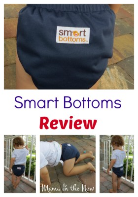 Smart Bottoms Review