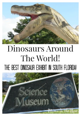 Dinosaurs Around the World exhibit at the South Florida Science Center. This is the best and most educational dinosaur exhibit around. Our budding paleontologists loved every roar, fossil and animatronic dinosaur.