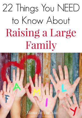 Considering having a large family? There are a few things no one ever tells you about having a lot of kids, but leave it to this mother of four to share the truth! Motherhood truth, large family secrets, happy family.