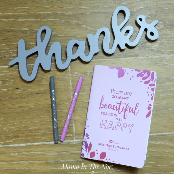 How to be happier and more grateful in just 10 minutes a day. Mindfulness and gratitude journaling. Change your attitude to one of gratitude. Thankfulness and appreciation. Erin Condren review, On the Go Folio and PetitePlanners. #ErinCondren #ErinCondrenReview #DayPlanner #GratitudeJournal #WeightLoss #GoalSetting #WorkAtHomeMom #MamaintheNow #Howtobehappier #GratitudeJournal #Motherhood #HappierMotherhood #AttitudeofGratitude #Appreciation #Thankfulness #Gratefulness #ad