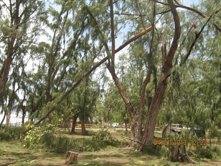 Cyclone Dumile 044