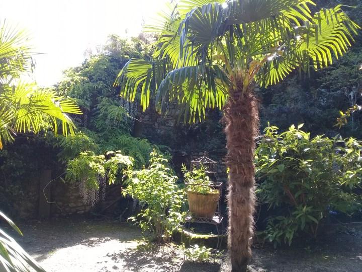 5mai - Le Jardin d'Eden - Tournon sur Rhône (1)