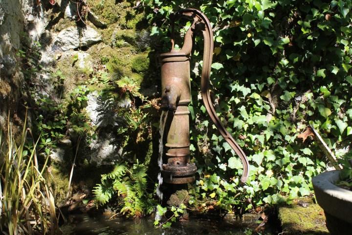 5mai - Le Jardin d'Eden - Tournon sur Rhône (7)