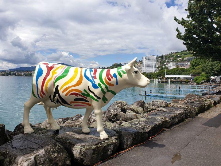 visiter Montreux Suisse - Biennale de Montreux