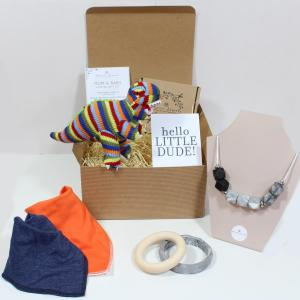 REX HAMPER - Rex the dinosaur mum and baby teething hamper gift set.