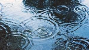 弱雨の読み方