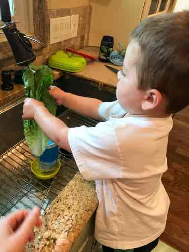 Toddler Help in Kitchen (4 of 13)