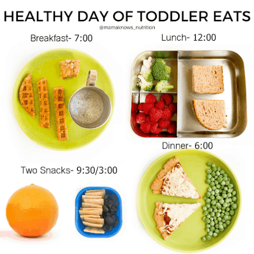 1 Year Old Feeding Schedule