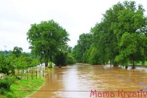 Die Sonne und das Hochwasser