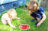 Kinder essen Kirschen
