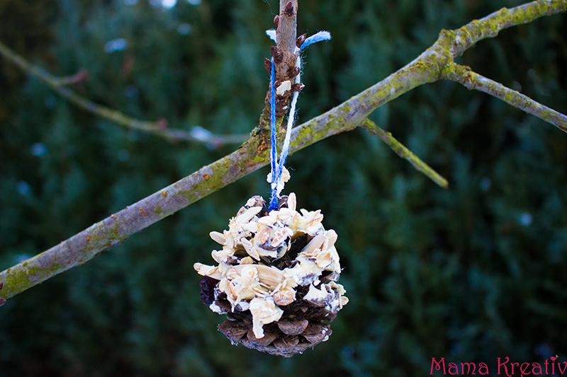 Vogelfutter selber machen erstellen aus Samen und Nüssen (10)