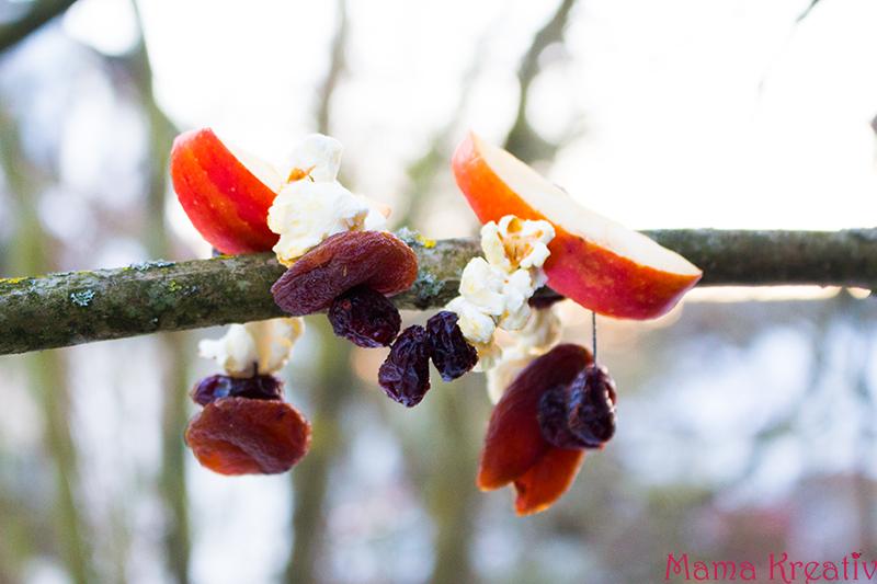 Vogelfutter selber machen erstellen aus Samen und Nüssen (17)