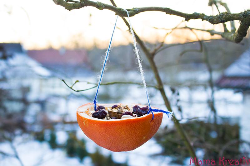 Vogelfutter selber machen erstellen aus Samen und Nüssen (18)