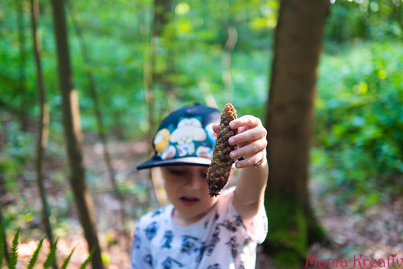 mit Kindern Wald entdecken