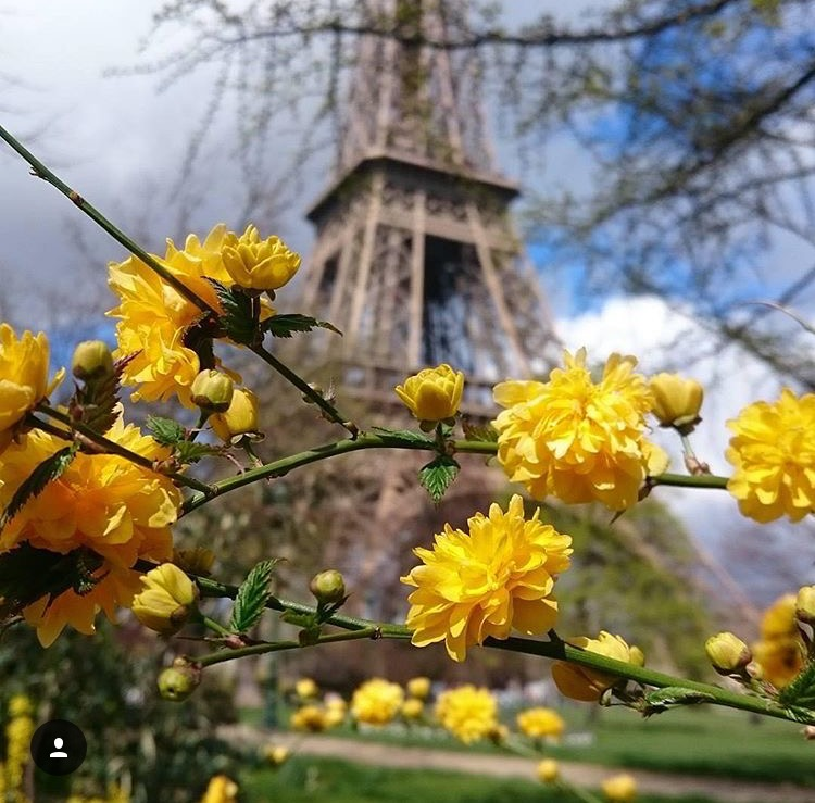 40 Ways to enjoy Spring in Paris