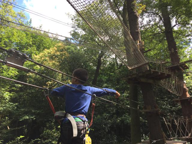 Tree+Climbing+Rope