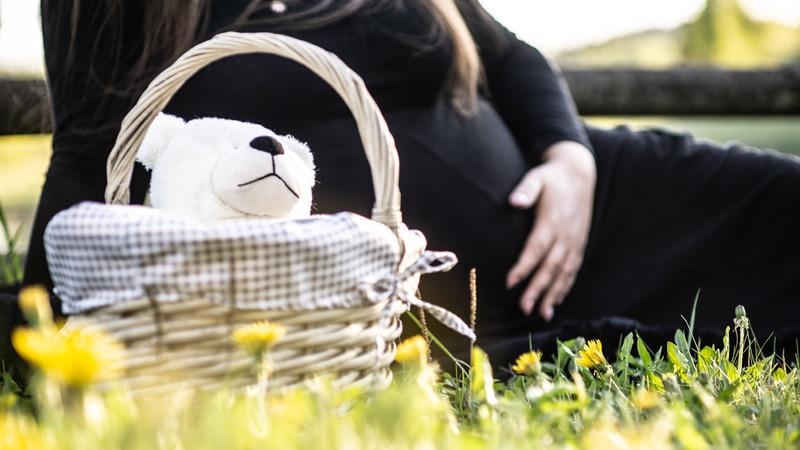 Voucherele Materna si Stimulentul Financiar pentru Nou Nascuti Mama lui Vladimir