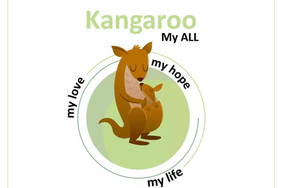 Povestea Kangaroo produse realizate cu suflet Mama lui Vladimir 4