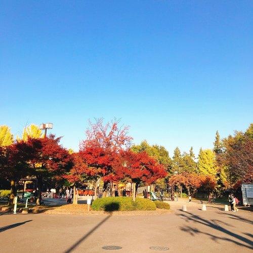 長野市若里公園入口