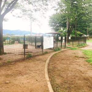 川中島古戦場史跡公園ドッグラン