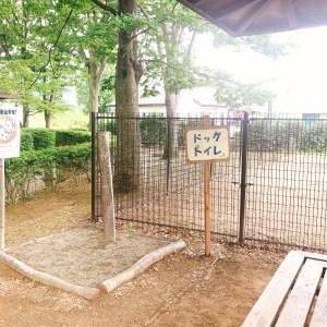 川中島古戦場史跡公園ドッグラン2