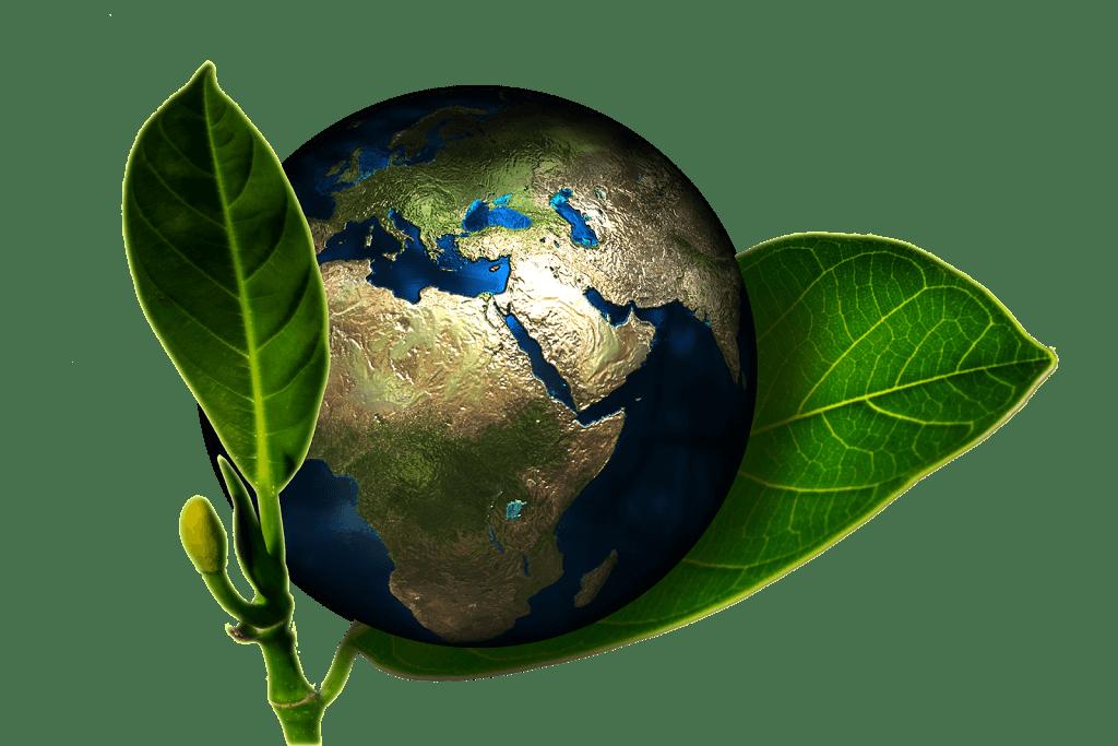 10 tips om een beetje groener te leven