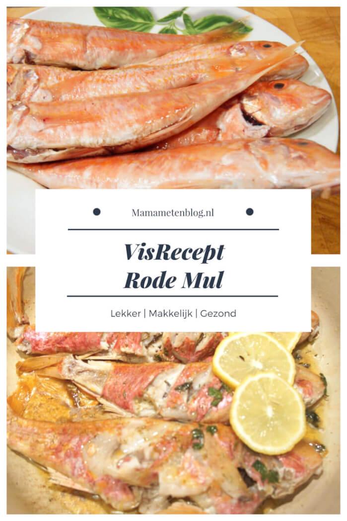 Visrecept Rode Mul Mamameteenblog.nl